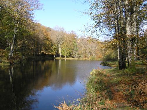 site rencontre tarn et garonne Marcq-en-Barœul
